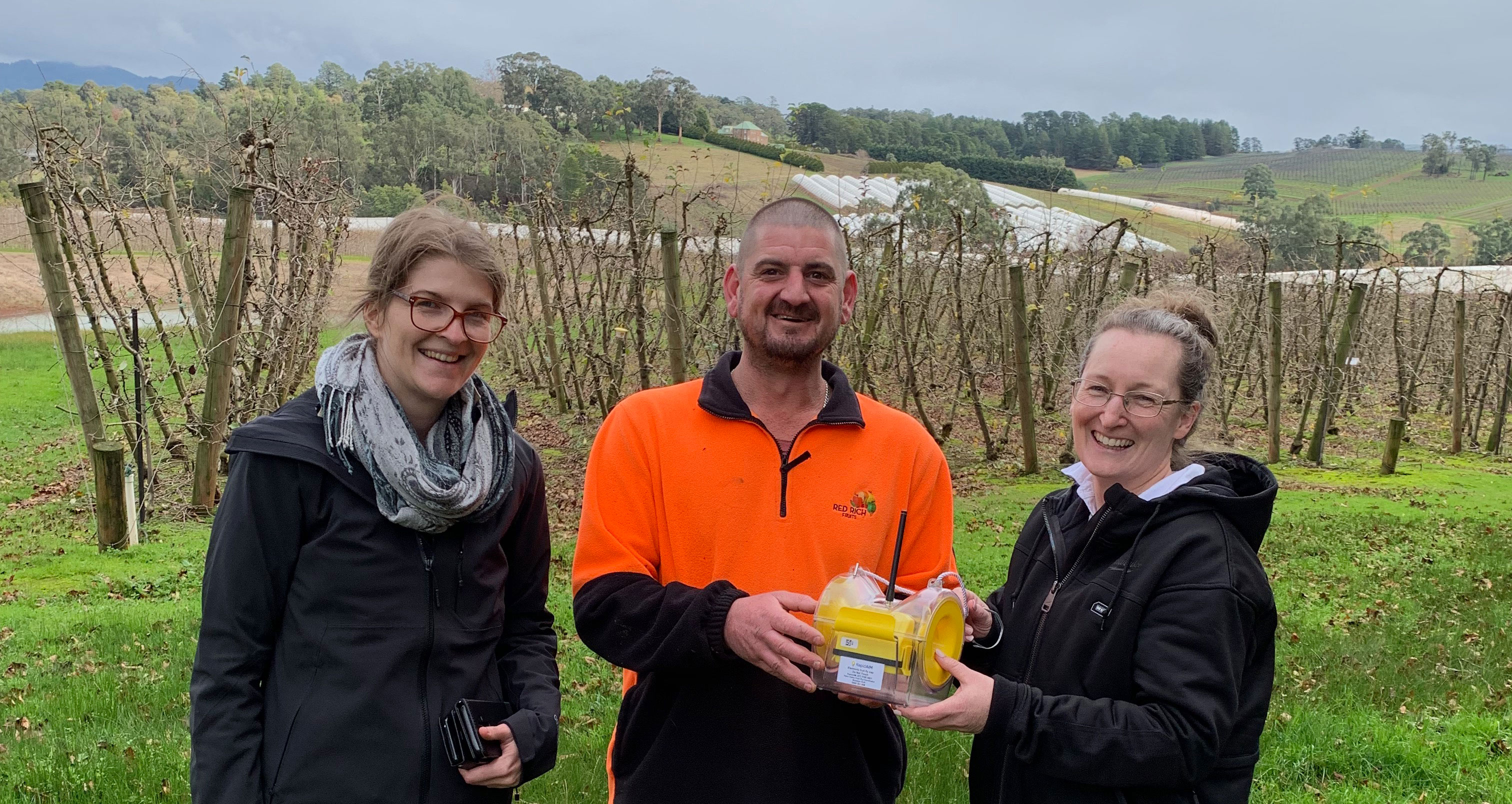 RapidAIM – keeping fruit fly out of the Yarra Valley